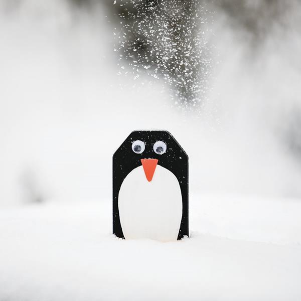2_Gestaltung\1xxx\100506_G1_Pinguin.jpg