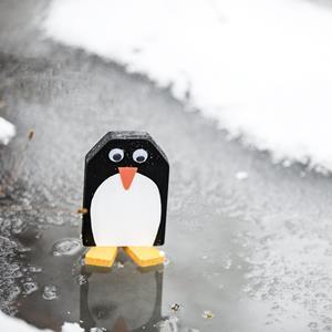 2_Gestaltung\1xxx\100506_G2_Pinguin.jpg