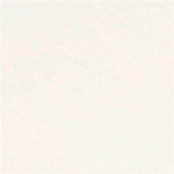 8_Farbfelder\2xxx\216602_Karten_perlweiss.jpg