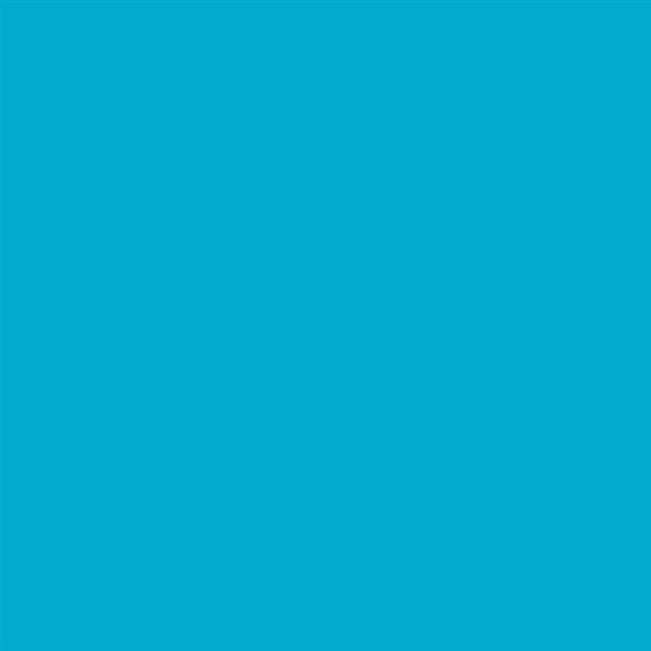 8_Farbfelder\2xxx\222365_Patio-Paint_Indisch-Tuerkis.jpg