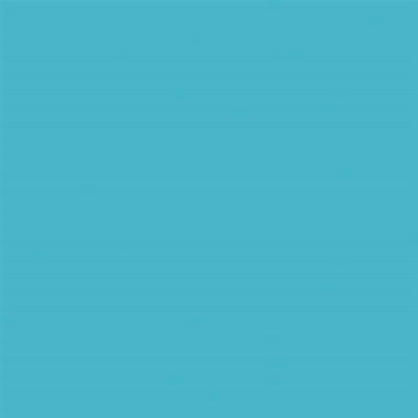 8_Farbfelder\2xxx\228262_Deco_Painter_Aquamarintif.jpg