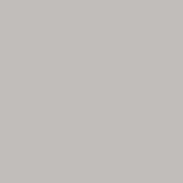 8_Farbfelder\2xxx\228292_Deco_Painter_Silber.jpg