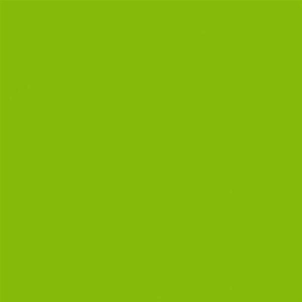 8_Farbfelder\2xxx\231053_Hobby-Line-Acryl-Glanzlack_Lindgruen.jpg