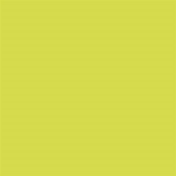 8_Farbfelder\2xxx\286751_SoloGoya-Acryl_Lichtgruen.jpg