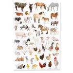 1_Produkt\4xxx\401951_3_Etiketten_Animal.jpg