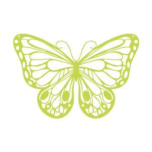 1_Produkt\5xxx\501702_1_Silhouette_Schmetterling.jpg