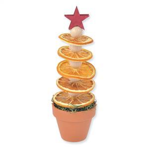 2_Gestaltung\6xxx\602859_G1_Orangenbaum.jpg