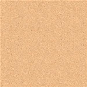 8_Farbfelder\8xxx\844707_Moosgummi-Platten_Fleischfarbe.jpg